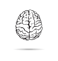 Brain icon on the white background vector