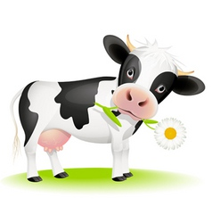 Cow eating daisy vector