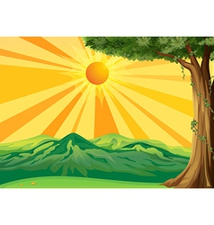 Sunrise view vector