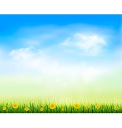 Summer gaze background with blue sky and a field vector
