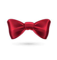 Bow tie red vector