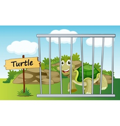 Turtle zoo sign vector