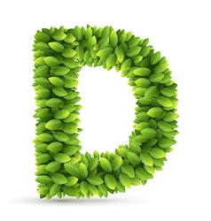 Letter d alphabet of green leaves vector