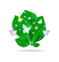 Green leaves with butterflies and waterdrops vector