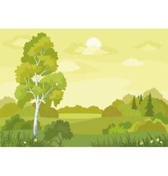Woodland landscape vector