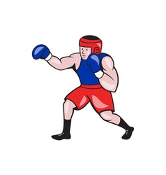 Amateur boxer boxing cartoon vector