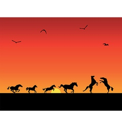 Silhouettes of horses sunset vector
