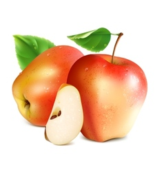 Red apples with slice vector