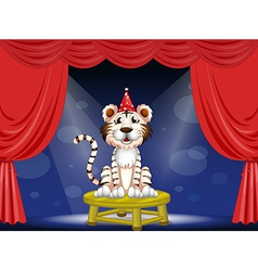 Cartoon circus tiger vector