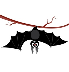 Bat cartoon vector