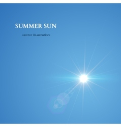 Summer sun sky background vector