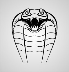 King cobra head vector