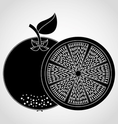 Fresh fruit vector