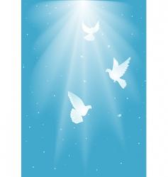 Three white dove vector