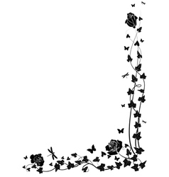 Roses and ivy vector