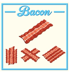 Bacon set hand drawn bacon vector