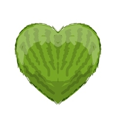 Watermelon heart shape for your design vector