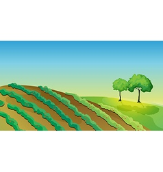 Agricultural land and trees vector