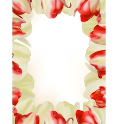 Colorful spring flower background eps 8 vector