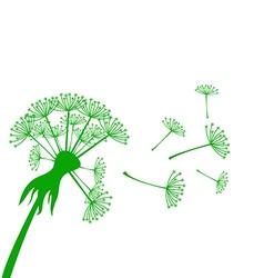 Banner with dandelion vector
