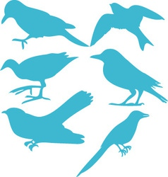 Birds digital clipart 3 vector