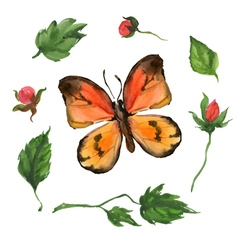 Orange butterfly and flowers vector