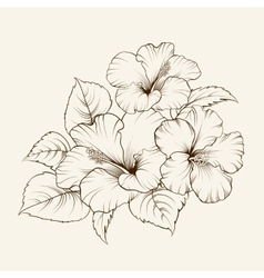 Flower of mallow vector