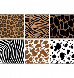Animal skin prints vector