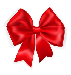 Big red bow vector