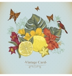 Vintage greeting card tropical fruit flowers vector