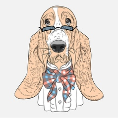 Hipster dog basset hound breed vector
