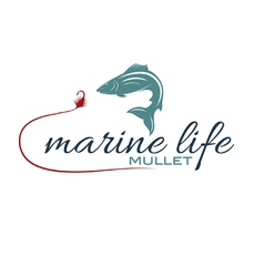 Marine life with mullet vector