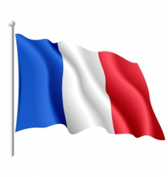 Flag of france vector