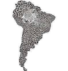 Jaguar on the map of south america vector