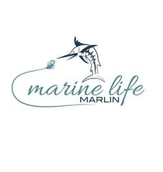 Marine life with marlin vector