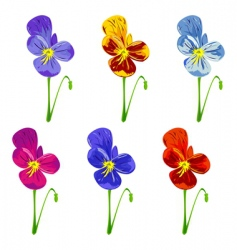 Six colored pansies vector