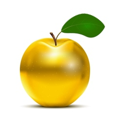 Golden apple vector