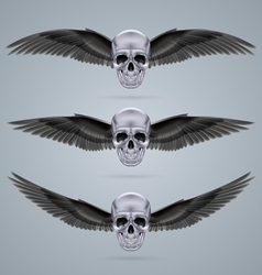Three metal chrome skulls with two wings vector