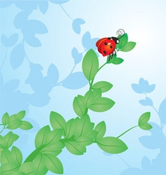Red ladybird on the tree branch vector