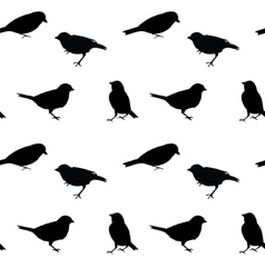 Black and white seamless pattern with birds vector