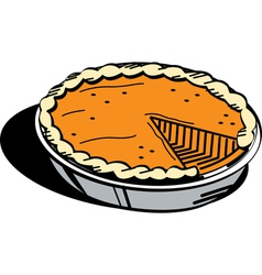 Pumpkin pie vector
