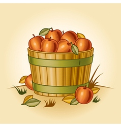 Retro bushel of apples vector