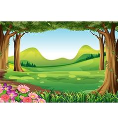 A green forest vector
