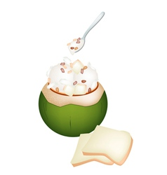 Coconut ice cream with nuts and bread vector