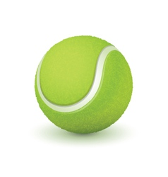 Tennis ball vector