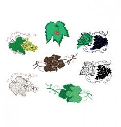 Set of grape design elements vector