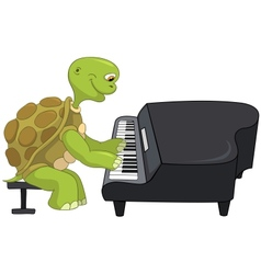 Funny turtle pianist vector