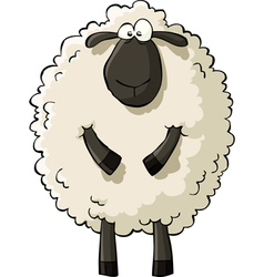Sheep vector