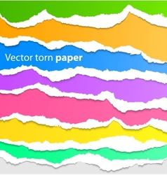 Collection of colorful torn paper vector