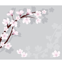 Cherry branch vector